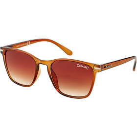 Alpina Yefe Lunettes, brown transparent/brown gradient